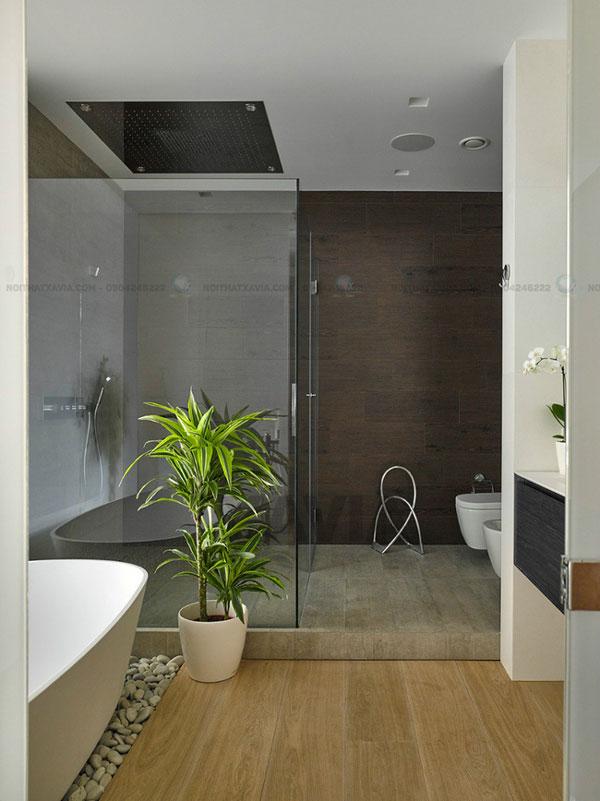 Sàn gạch cùng màu xám với chậu cây xanh mướt làm điểm nhấn cho không gian thêm sáng hơn
